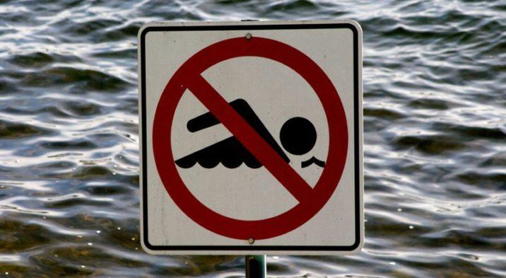 Bieżąca ocena jakości wody w kąpielisku Rewa od strony Zatoki Puckiej