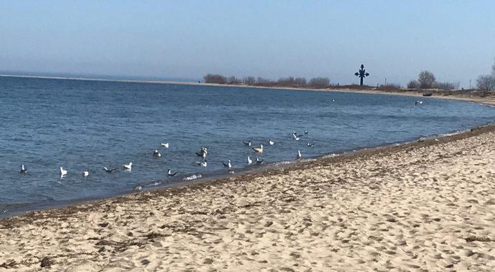 Bieżąca ocena jakości wody w kąpieliskach – 23.06.2017r.